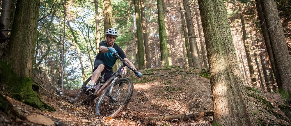 Mountain Biking on the Tamar Trails