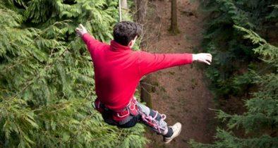 treesurfers-jump
