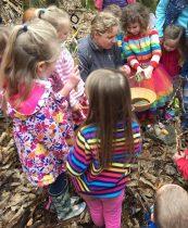 kids woodland outdoors
